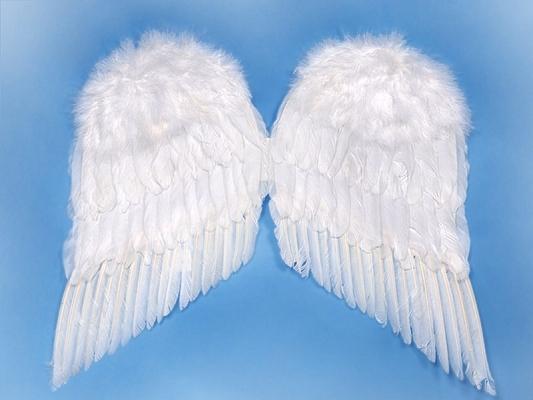 Karnevalové doplňky - Péřová andělská křídla 55x45 cm