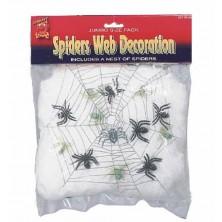 Pavučina se 6 pavouky