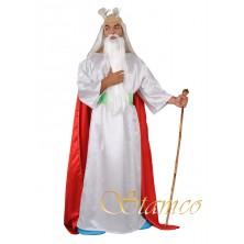 Pánský kostým Galský čaroděj