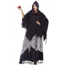 Kostým Zlá královna čarodějnice