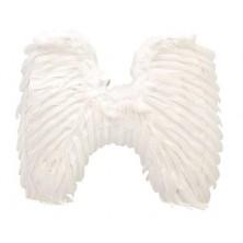 Křídla péřová