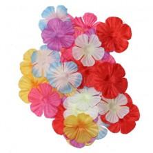 Hawai květy 500 ks - dekorace
