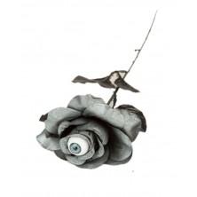 Černá růže s okem I