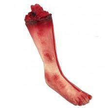Zraněná noha