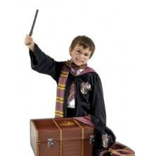 Sada Kufr Harryho Pottera